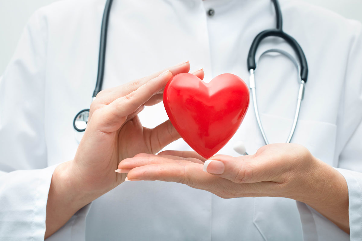 вплив алкоголю на серце